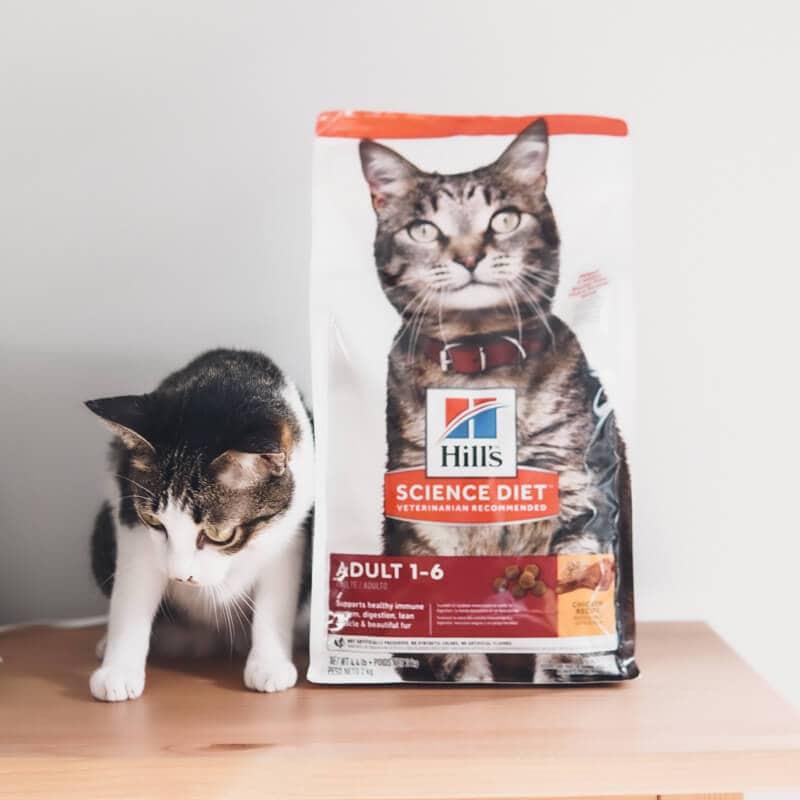 มาดูอาหารแมว Hill's Science Diet Adult